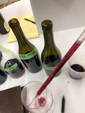 Pinot Noir Blending Experience - 12 Bottle